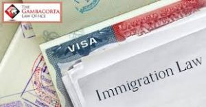 Immigration law and visa forms