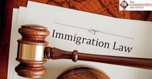 Gavel atop a paper that says immigration law