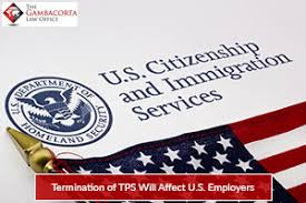 U.S. Citizenship and Immigration Services pamphlet and American flag